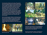 Im Takt der alten Zeit (DVD)